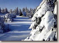 Der Sauerländer Winter lädt zum Skifahren, Langlauf oder zum Wandern ein.